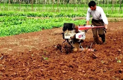 Supporting modernization of small agricultural households